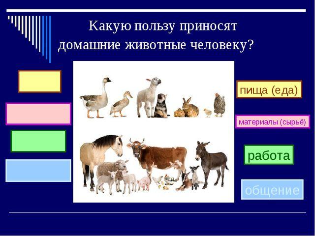 Какую пользу приносят домашние животные человеку? пища (еда) работа материал...