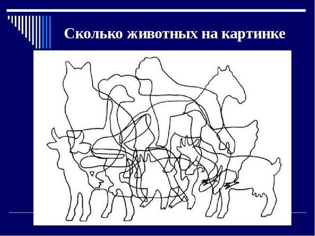 Сколько животных на картинке