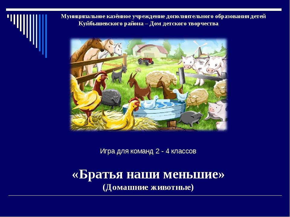 Муниципальное казённое учреждение дополнительного образования детей Куйбышев...