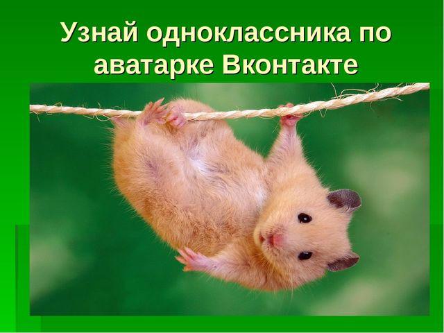 Узнай одноклассника по аватарке Вконтакте