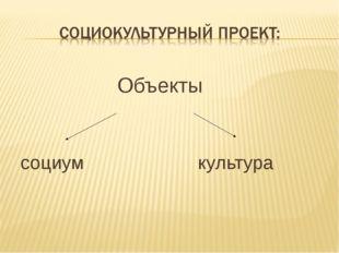 Объекты социум культура