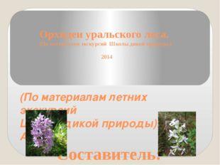 Орхидеи уральского леса. (По материалам экскурсий Школы дикой природы.) 2014