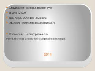 2014 Свердловская область,г. Нижняя Тура Индекс 624239 Пос. Косья, ул.Ленина