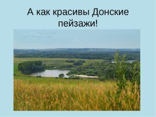А как красивы Донские пейзажи!
