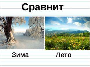 Сравните Зима Лето