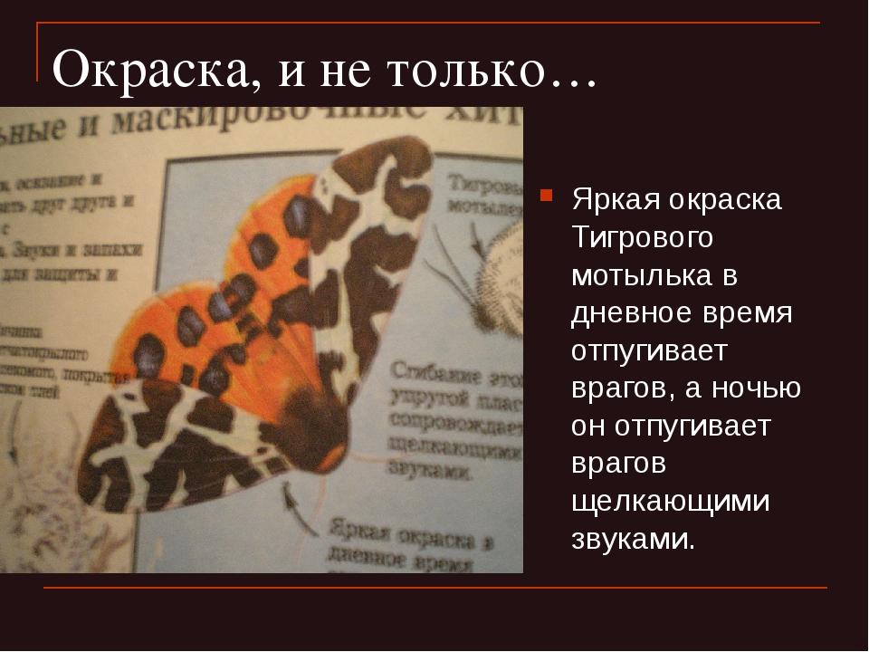 Окраска, и не только… Яркая окраска Тигрового мотылька в дневное время отпуги...