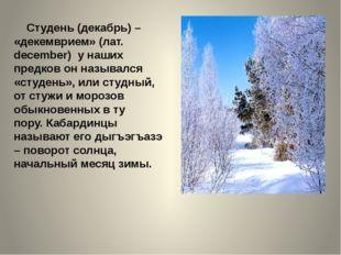 Студень (декабрь) – «декемврием» (лат. december) у наших предков он называлс