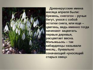 Древнерусские имена месяца апреля были: брезень, снегогон – ручьи бегут, уно