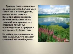 Травник (май) - латинское имя дано в честь богини Маи; также, как и многие д