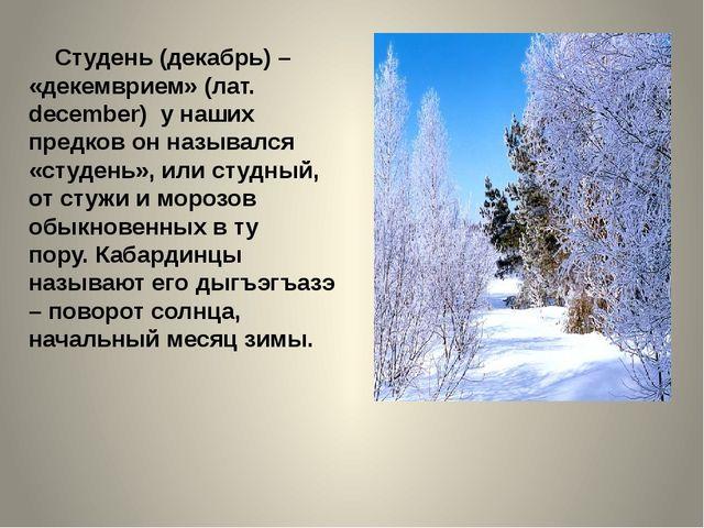Студень (декабрь) – «декемврием» (лат. december) у наших предков он называлс...