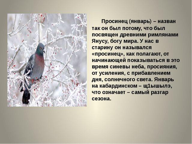 Просинец (январь) – назван так он был потому, что был посвящен древними римл...