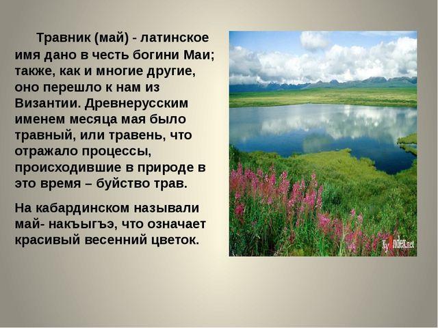 Травник (май) - латинское имя дано в честь богини Маи; также, как и многие д...