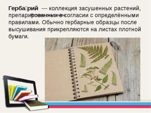 Герба́рий — коллекция засушенных растений, препарированных в согласии с опре