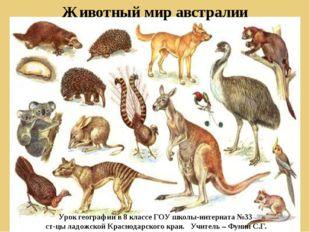 Животный мир австралии Урок географии в 8 классе ГОУ школы-интерната №33 ст-ц