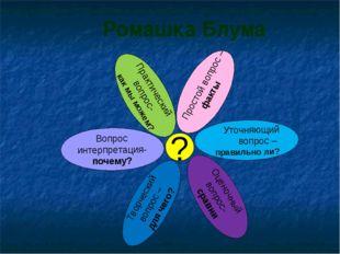 Ромашка Блума Простой вопрос – факты Уточняющий вопрос – правильно ли? Оценоч
