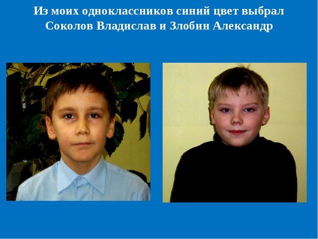 Из моих одноклассников синий цвет выбрал Соколов Владислав и Злобин Александр