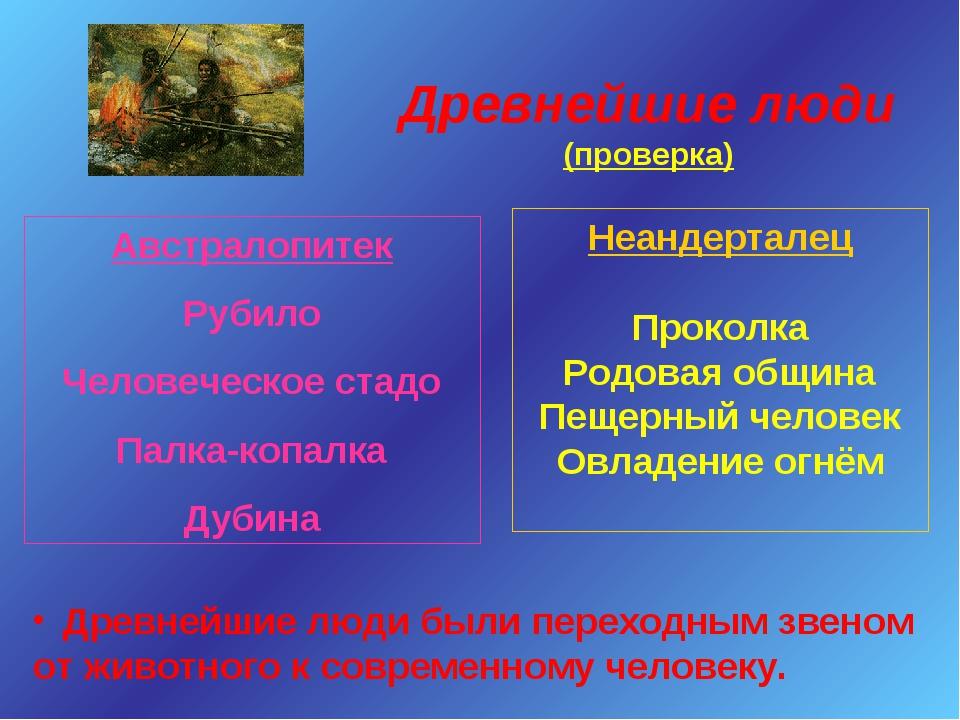 Древнейшие люди (проверка) Австралопитек Рубило Человеческое стадо Палка-копа...