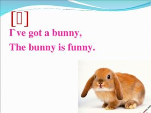 [ᶺ] I`ve got a bunny, The bunny is funny.