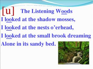 [u] The Listening Woods I looked at the shadow mosses, I looked at the nests