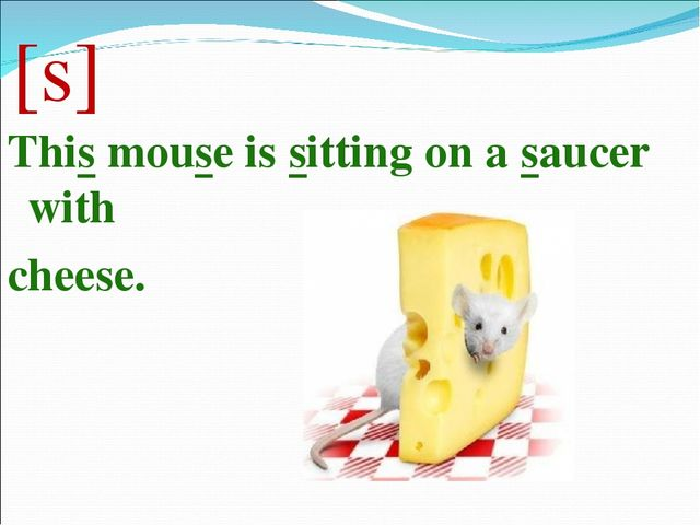 [s] This mouse is sitting on a saucer with cheese.