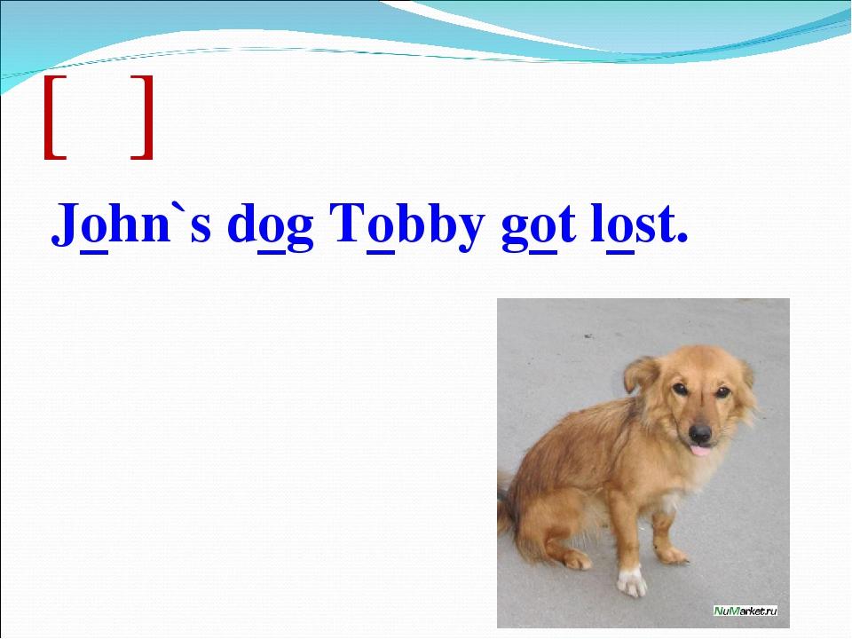 [ɔ] John`s dog Tobby got lost.