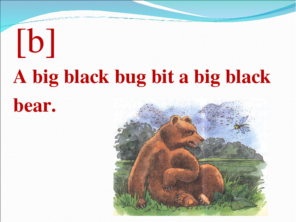 [b] A big black bug bit a big black bear.