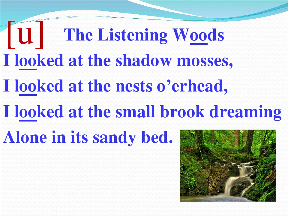 [u] The Listening Woods I looked at the shadow mosses, I looked at the nests...