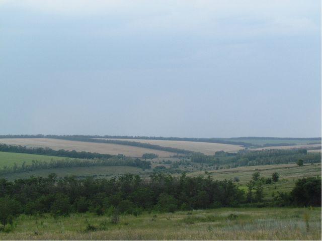 Балка между с. Дерезовка и х. Оробинский