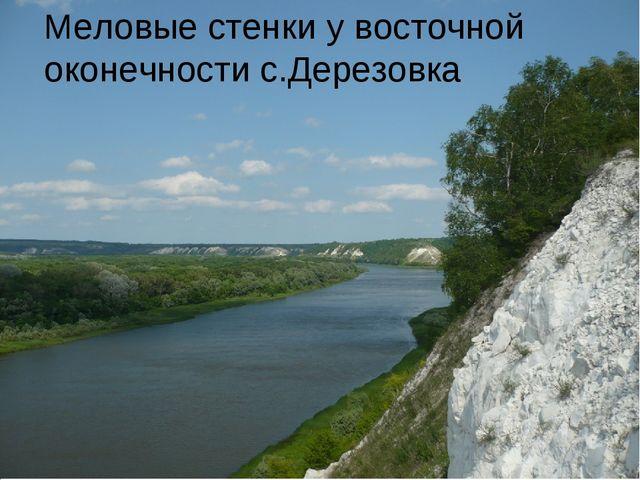 Меловые стенки у восточной оконечности с.Дерезовка