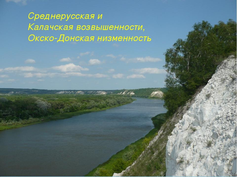 Среднерусская и Калачская возвышенности, Окско-Донская низменность