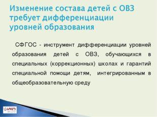 СФГОС - инструмент дифференциации уровней образования детей с ОВЗ, обучающих