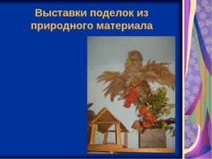 Выставки поделок из природного материала