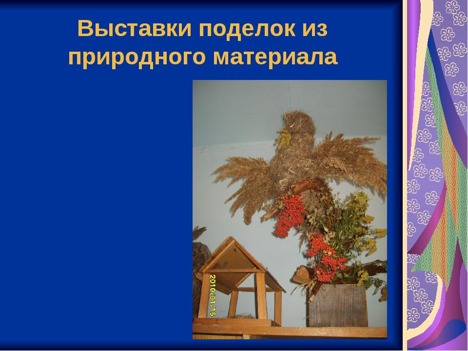 Поделки из природного материала презентация
