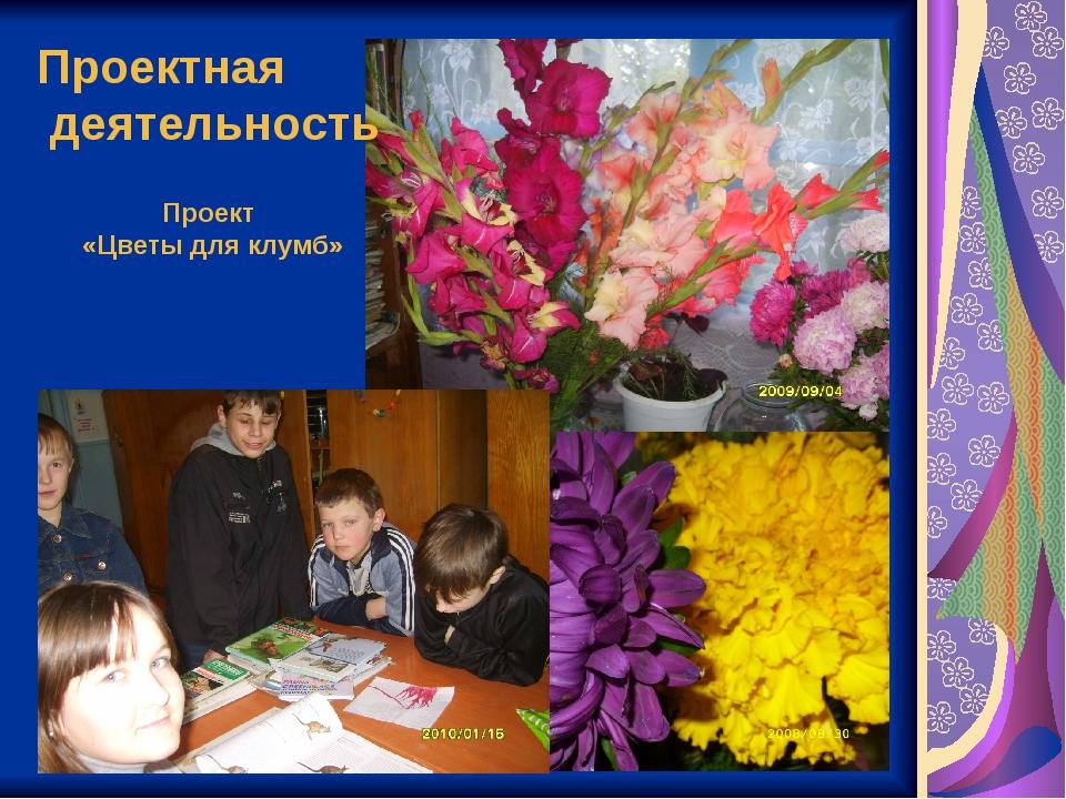 Проектная деятельность Проект «Цветы для клумб»