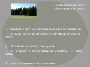 Тестирование по теме: «Экскурсия в ельник» 1. Укажите животных, которые питаю