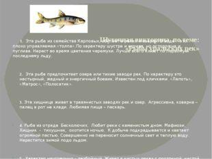 Шуточная викторина по теме: «Рыбы уральских рек» 1. Эта рыба из семейства Ка