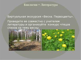 Биология + Литература Виртуальная экскурсия «Весна. Первоцветы». Проведите ее