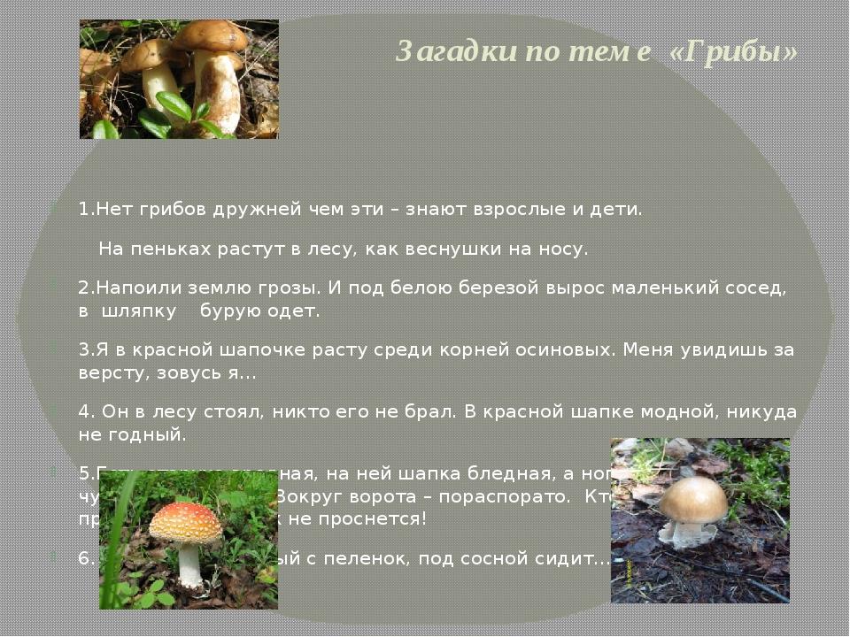 Загадки по теме «Грибы» 1.Нет грибов дружней чем эти – знают взрослые и дети....