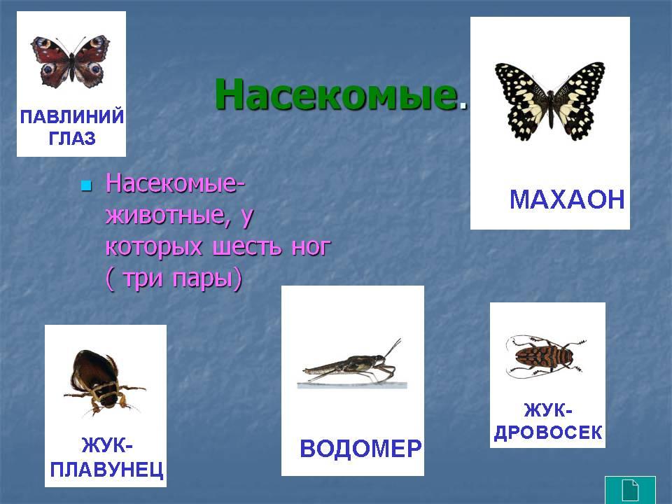 hello_html_128881e3.jpg