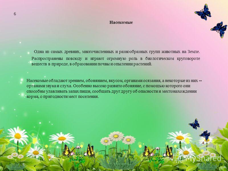 hello_html_m398e2dd8.jpg