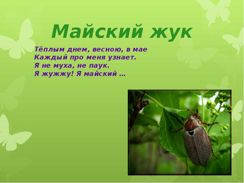 hello_html_m3eb3f47c.jpg