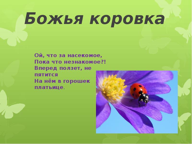 hello_html_m63f0176.jpg