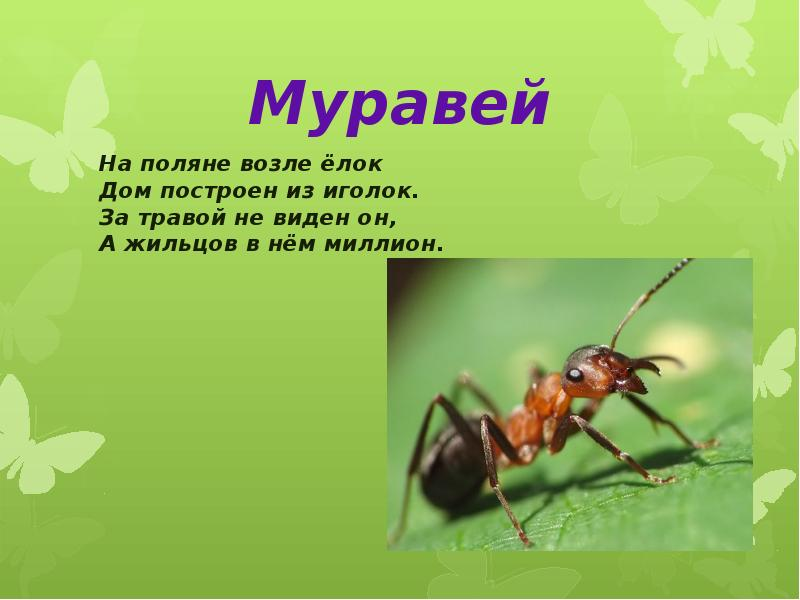 hello_html_m7f592a1c.jpg