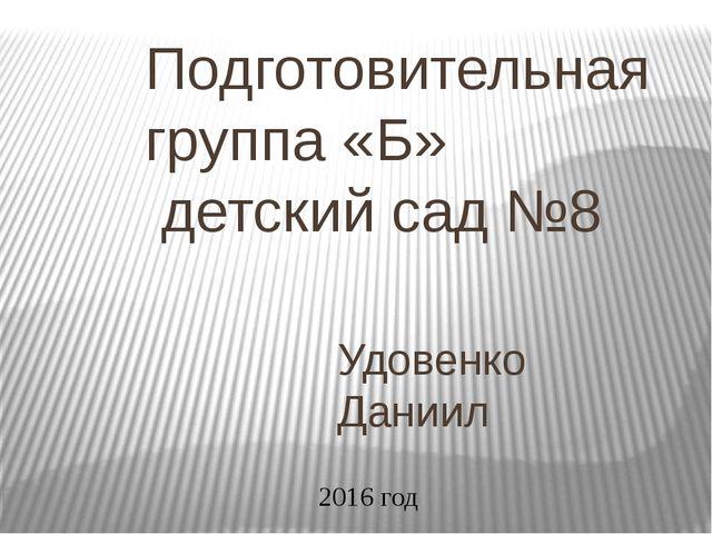 Подготовительная группа «Б» детский сад №8 Удовенко Даниил 2016 год