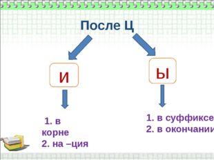 После Ц  ы и 1. в корне 2. на –ция 1. в суффиксе 2. в окончании