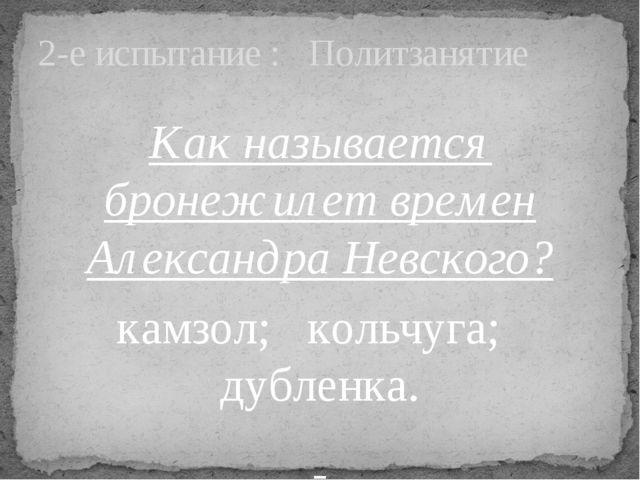 Как называется бронежилет времен Александра Невского? камзол; кольчуга; дубле...