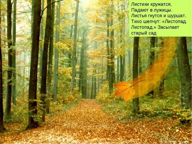 Листики кружатся, Падают в лужицы. Листья гнутся и шуршат. Тихо шепчут: «Лист...