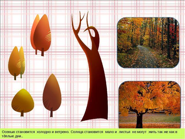 Осенью становится холодно и ветрено. Солнца становится мало и листья не могут...