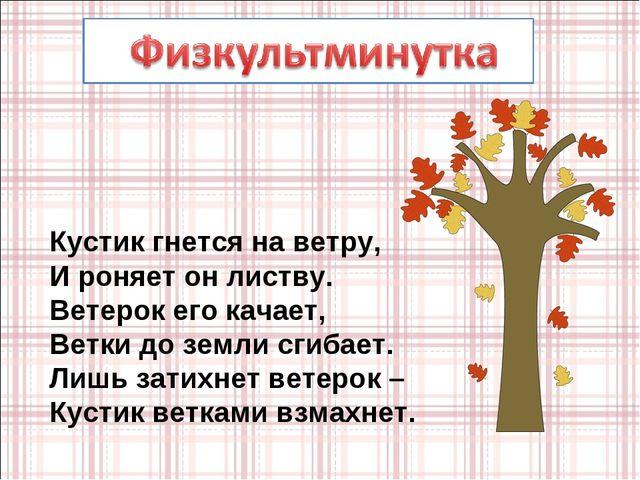 Кустик гнется на ветру, И роняет он листву. Ветерок его качает, Ветки до земл...
