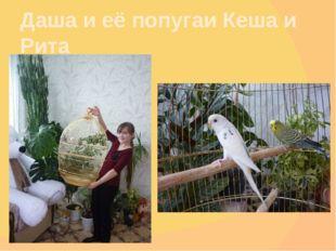 Даша и её попугаи Кеша и Рита